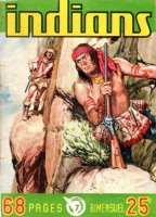 Grand Scan Indians n° 7
